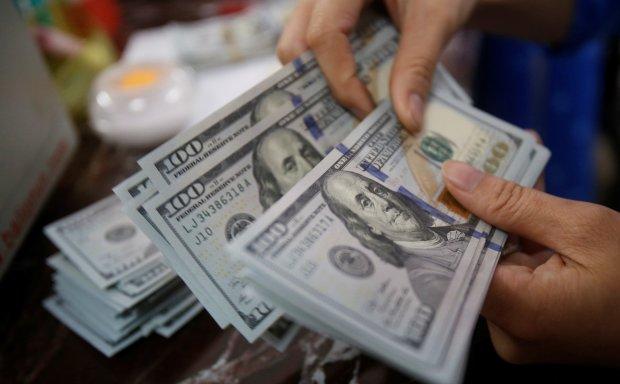 Різкий стрибок чи плавне зниження: як вибори вплинуть на курс долара в Україні