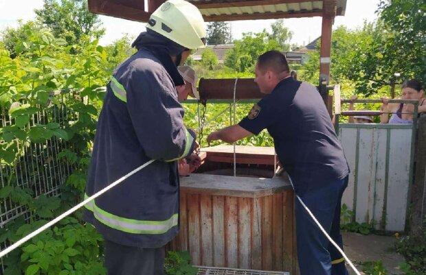 Українські рятувальники, скріншот: Facebook