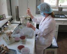 Работа в лаборатории, Сегодня