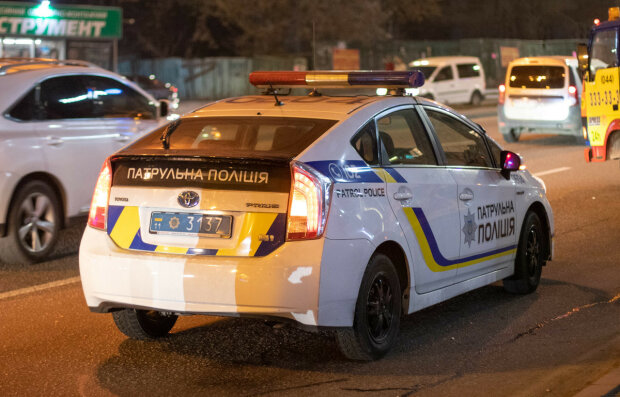 У Києві ряди копів поповнив муркотливий вартовий порядку