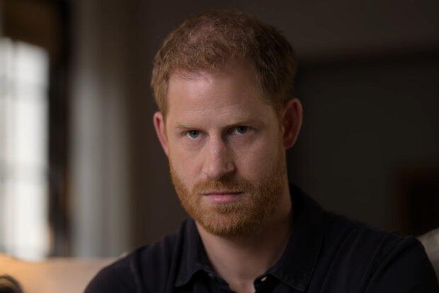 Принц Гарри, скриншот с видео