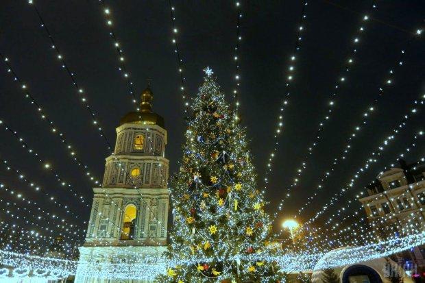 """На Софійській площі встановлять міксовану ялинку з """"живим"""" полярним сяйвом"""