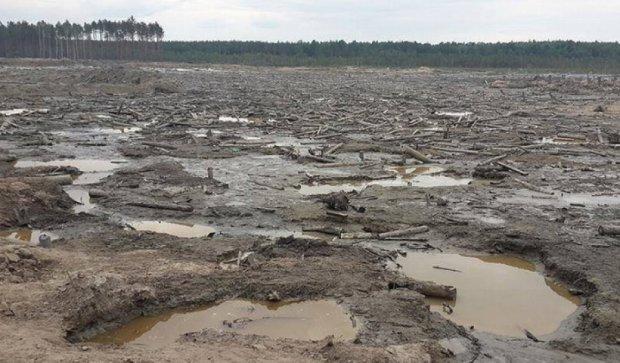 Автомайдан показав наслідки незаконного видобутку бурштину (фото)