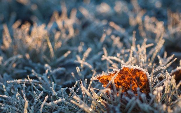 Погода на 10 ноября: Украина замерзнет еще сильнее