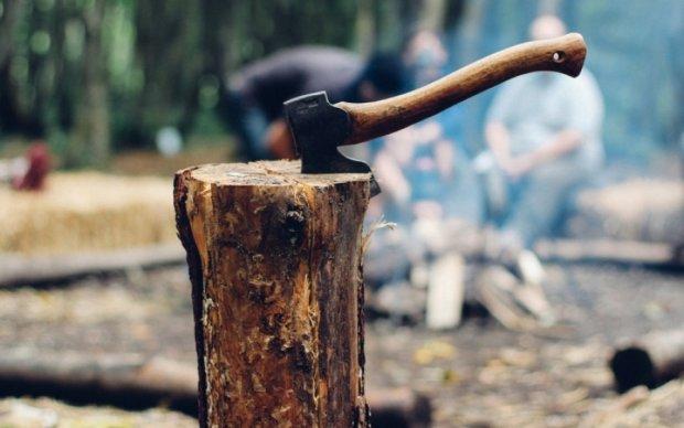 Столичні комунальники без дозволу знищують дерева