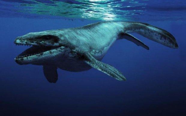 Монстры морских глубин, попавшие в объектив камеры