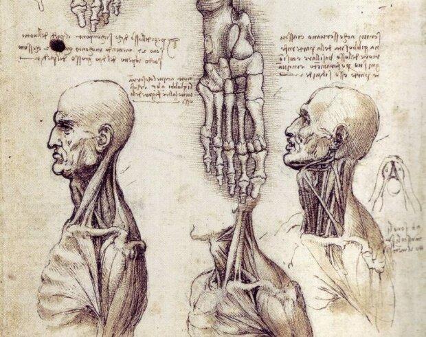 Леонардо да Вінчі мав регнтен в оці? Відкрито таємницю спопеляючого погляду Джоконди