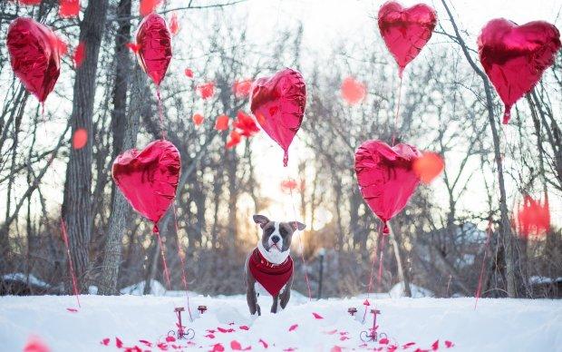 Погода на 14 лютого: стихія зіграє злий жарт з закоханими у День святого Валентина