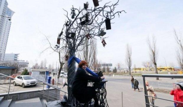 У Києві з'явилось швейне дерево