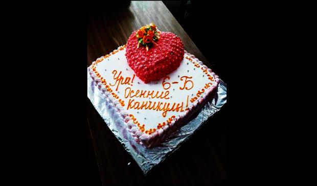 Снимали отчаяние и слезы на телефон: злосчастный торт в харьковской школе окончательно довел бедного ребенка