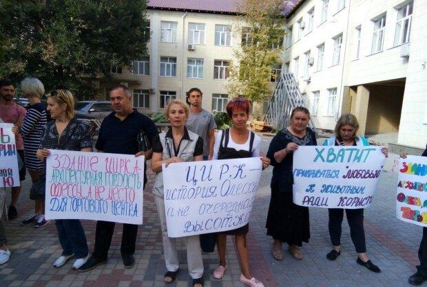 """Больше никаких """"дам с собачками"""": из Одесского цирка вывезут всех животных, что происходит"""
