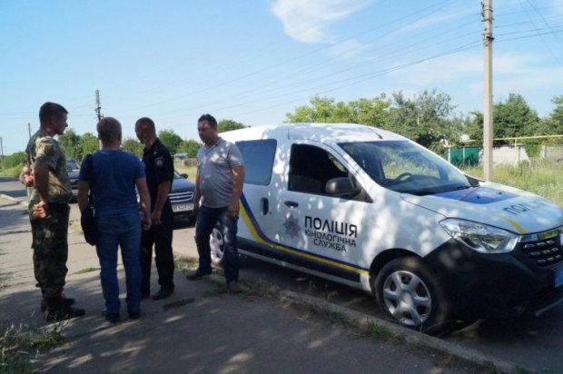 Полиция просит содействовать поискам