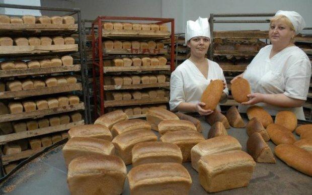 Мечта Януковича: вскоре весь хлеб в Украине станет золотым