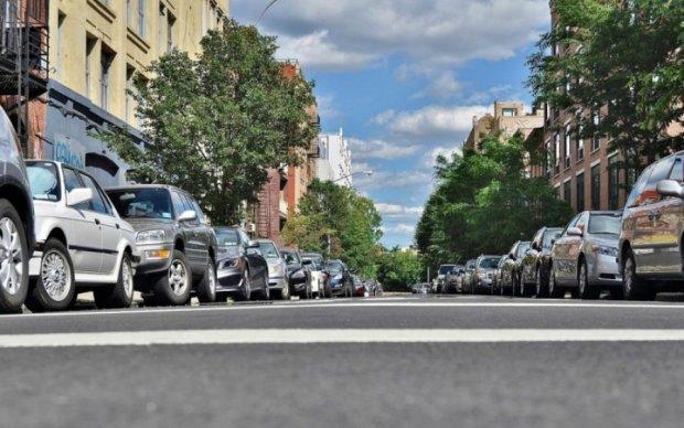 Ветка акации наказала киевских автохамов
