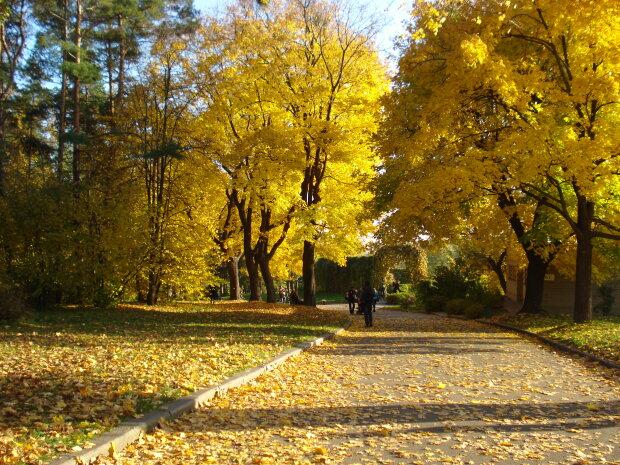 Запорожцы, зашкварит по-летнему: чего ожидать от погоды 18 октября