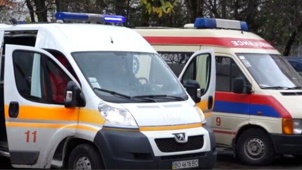 В Днепре спасают двухлетнего Егорку, которого растерзали собаки - полиция перевела стрелки на родителей