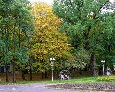 Винница, парк, декоративное фото