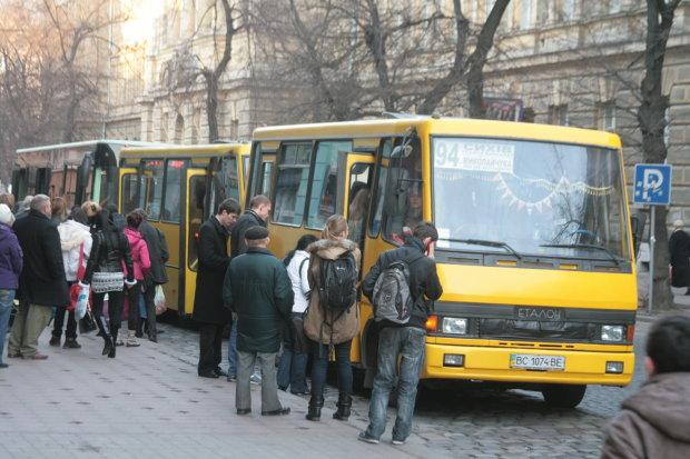 У маршрутці знайшли місцинку для дивовижного пасажира: європейський привіт, який ніхто не зрозумів