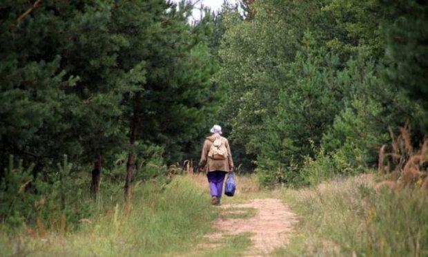 """Під Вінницею зник 90-річний любитель пригод: """"Пішов по гриби і..."""""""