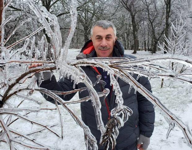 Евгений Комаровский, фото Instagram