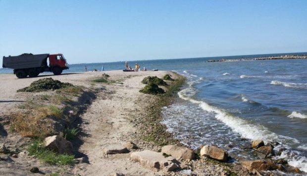 Азовское море на грани, Крымский мост добивает все живое: леденящие душу кадры