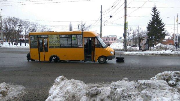 Килими замість вікон, відчувайте себе як вдома: львівські маршрутки прославилися на всю Україну