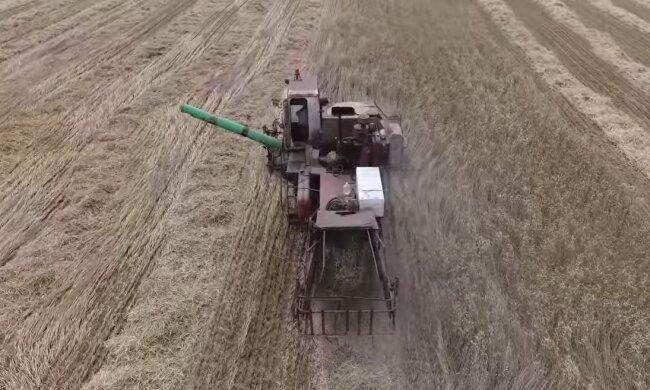 Аграрный сектор, скриншот: YouTube
