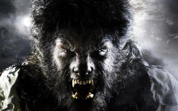 Волк или человек: огромный монстр наводит ужас на целый город