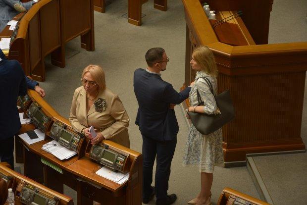 Олександра Кужель принесла до Верховної Ради сумку з пітона за 160 тисяч гривень