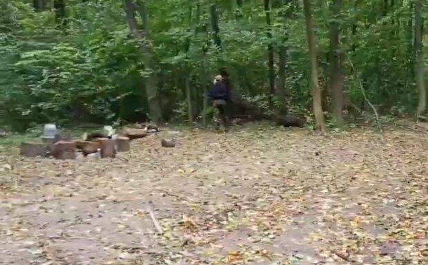 На Тернопольщине лесхоз опозорился на всю страну – поработали и оставили свалку