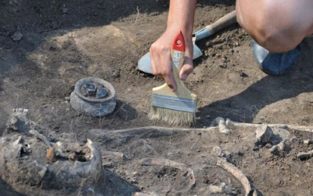 Гигантский окаменелый монстр поставил археологов в тупик: фото