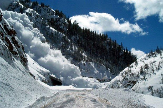 Снежная лавина безжалостно убивает туристов: любимое место для зимнего отдыха превратилось в кровавый ад