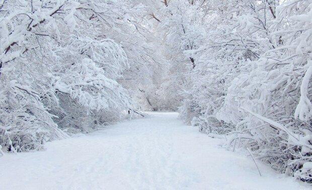 Запоріжці, ставайте на лижі: чого очікувати від погоди 3 грудня