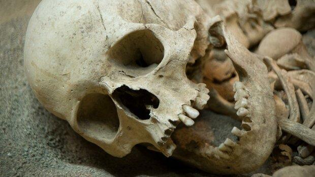 """Поглянути у вічі предків: прадавньому черепу """"відновили"""" обличчя, опубліковано фото"""