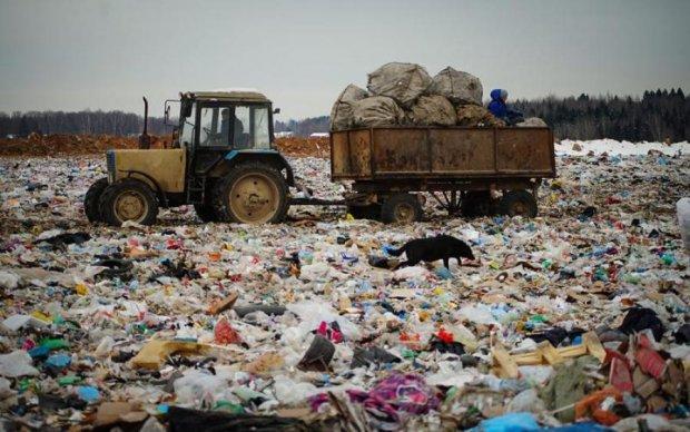Борьба с опасным мусором: активисты нарвались на путинских псов
