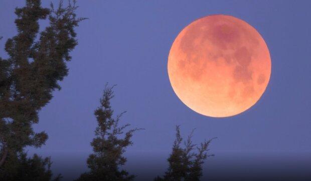 """""""Кровавая"""" луна: украинцы смогут увидеть уникальное природное явление в мае"""
