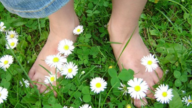 Комаровський показав, як правильно парити ноги