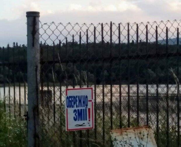"""Жителей города под Львовом поят водой из """"змеиного"""" озера, нервы людей на пределе: """"Продают отраву"""""""