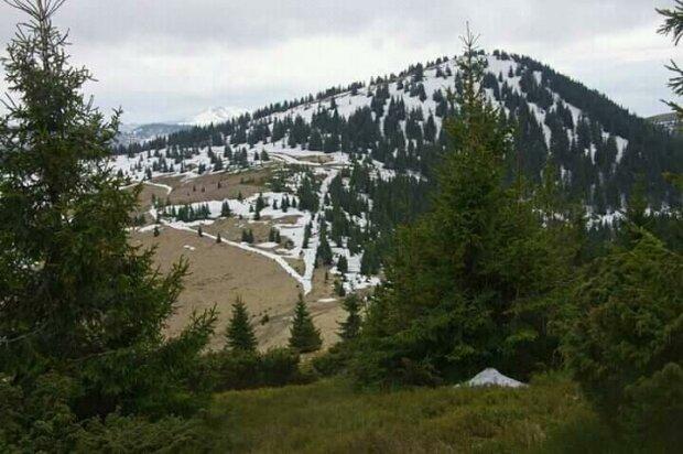 У Карпати прийшла зима в розпал травня - снігу по коліна