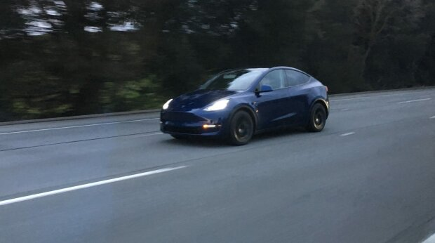Китайское искусство в Tesla: в сети показали новую модель автомобиля от Илона Маска