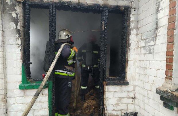 Пожежники, фото: ДСНС