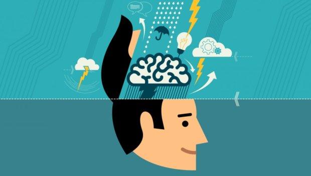Мегамозг: лучшие продукты для улучшения памяти