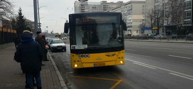 Общественный транспорт, фото: скриншот из видео