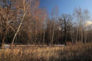 Погода в Україні, фото: PhotoCentra