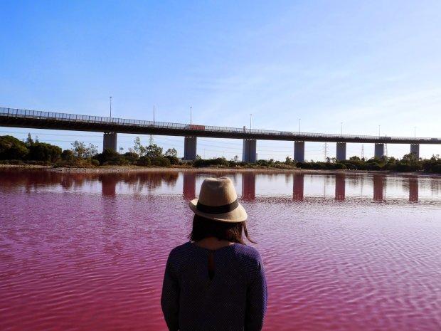 """Рожеві озера """"зацвіли"""" по всьому світу: людей просять триматися подалі від води"""