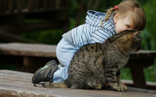 Возраст имеет значение: когда можно заводить кота ребенку