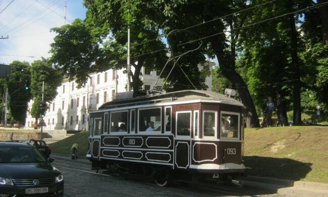60 років разом: львів'яни оригінально відсвяткували діамантове весілля, як два голубки