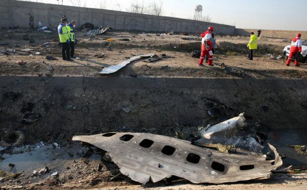 Збитий літак, фото: Abedin Taherkenareh