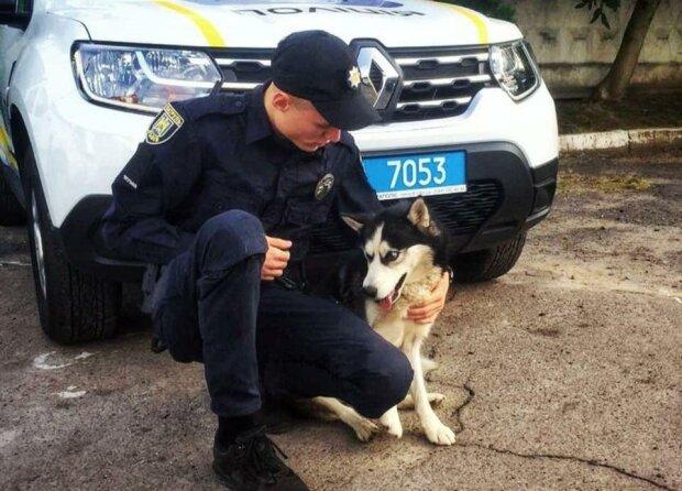 Собака Джесси и Максим Качан / фото: Патрульная полиция