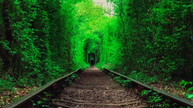 Путешественник, блогер Сподин Игорь рассказал о Тоннеле Любви в Ровенской области